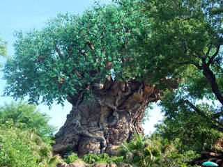 Walt Disney World - Disney's Animal Kingdom Park