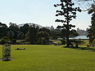 Royal Botanic Gardens Sydney. © Richard Gifford